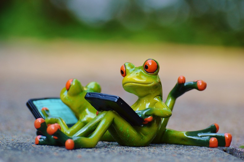 Frogs conducting a software audit.jpg