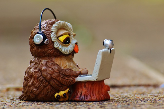IT Asset Management Owl.jpg