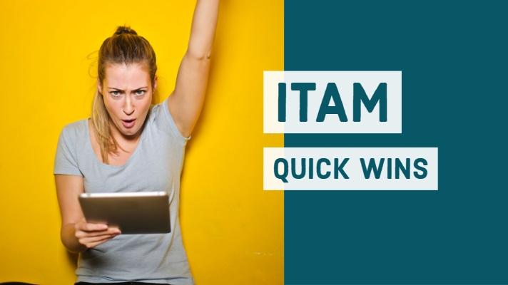 IT Asset Management Quick Wins (1)-1