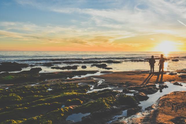 nature-sunset-beach-water