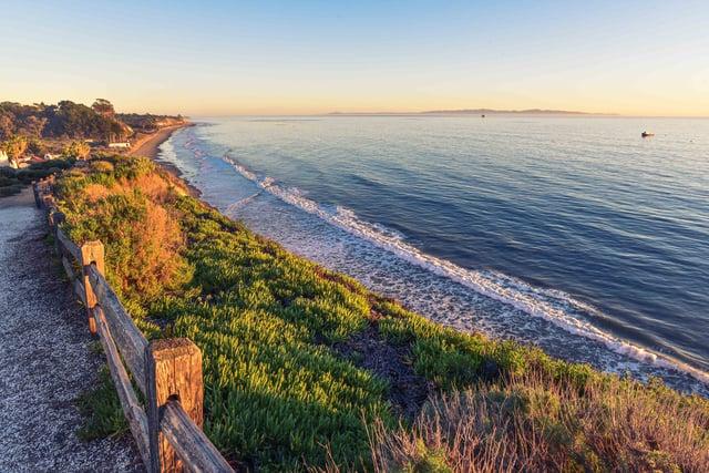 wood-nature-sunset-beach